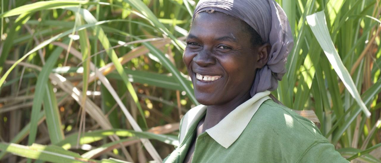 produttori di zucchero fairtrade