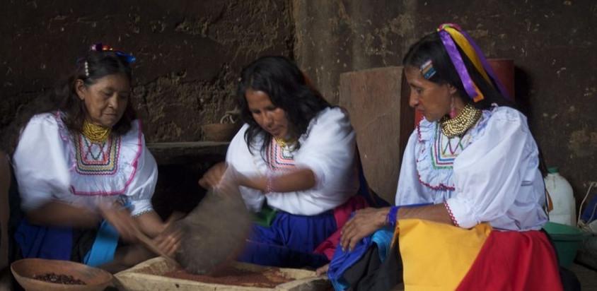 Cooperativa Cac Oro Verde, Perù