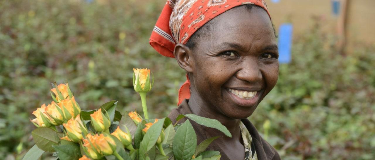 Kenya, Simbi Roses a Thika