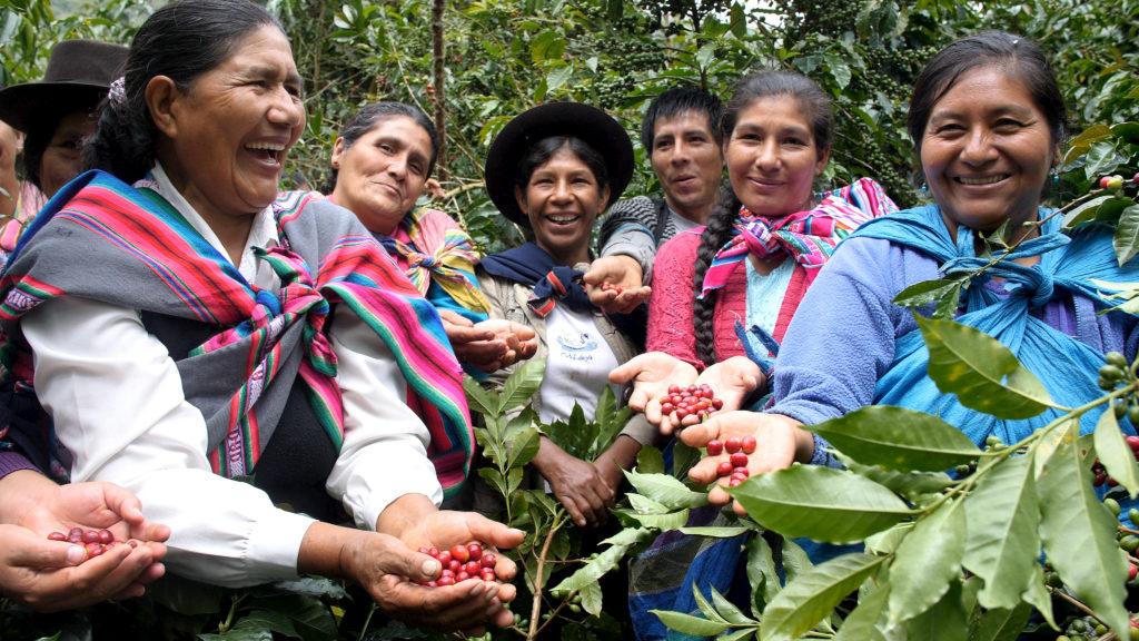 Cooperativa Agraria Cafetalera Valle de Incahuasi, Peru