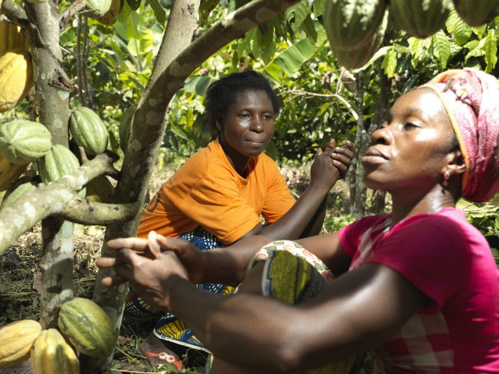 Donne della cooperativa CAYAT, Costa d'Avorio