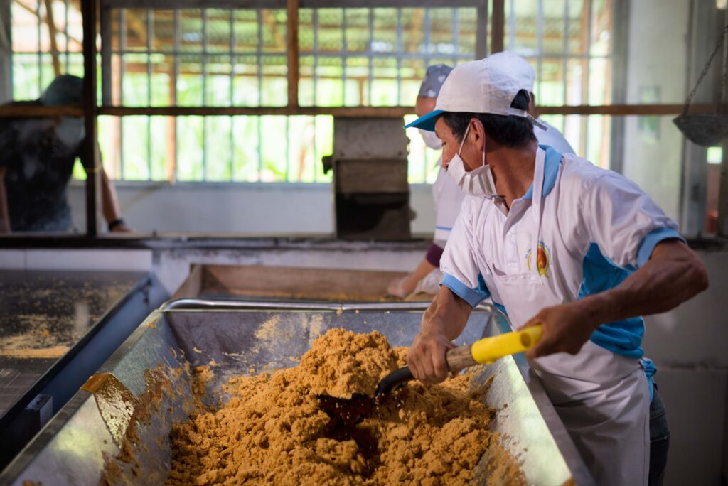Sgranatura della panela, dopo la bollitura del succo estratto dalla canna