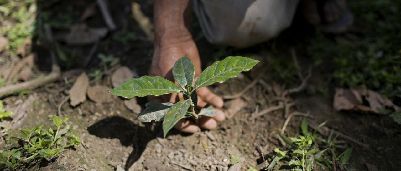 Cooperativa Agropecuaria Mejillones