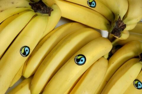 I prodotti certificati fairtrade - banane