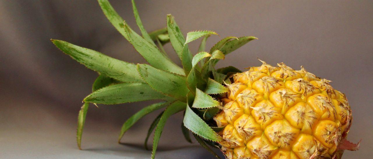 Torta all'ananas speziato