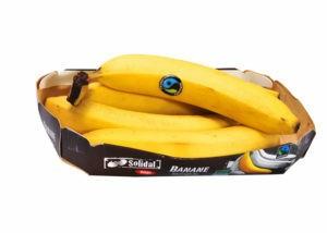 frutta fresca coop
